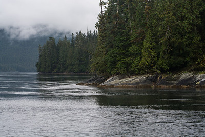 Great Bear Rainforest, B.C.